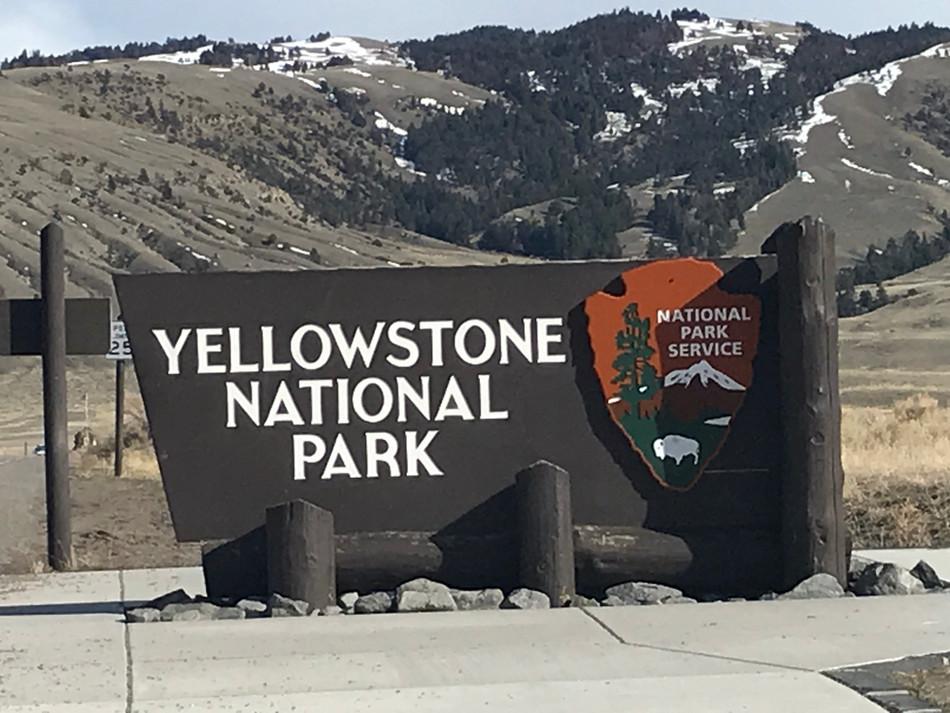 Yellowstone Again