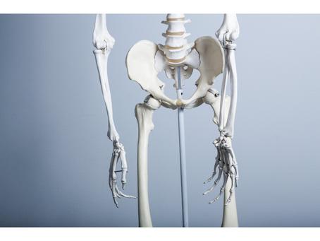 今話題の「骨盤底筋群」、、、弱るとどうなる??