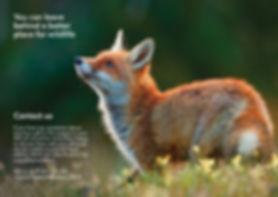 LACS legacy fulfilment brochure cover3.j
