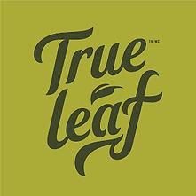 true leaf.jpg