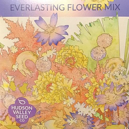 Everlasting Flower Mix