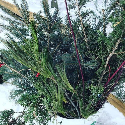 DIY Planter Bundle