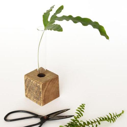 Single Propagation Vase with Wood Base