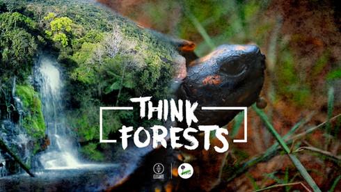 afiche think forests.jpg