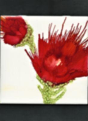 Brilliant Red Flowers.jpg