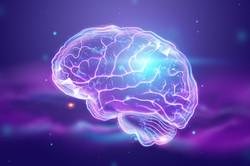 Screen Neuro-development in children