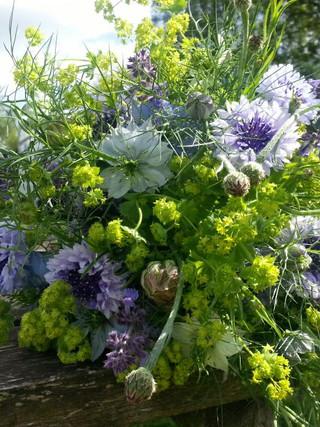 cornflowerbouquet.jpg