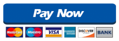Paynow-300x105.png