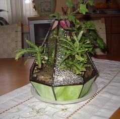 Kúp alakú tiffany növényház