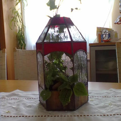 Tiffany növényház