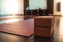 Power Hatha Yoga Lyon.jpg