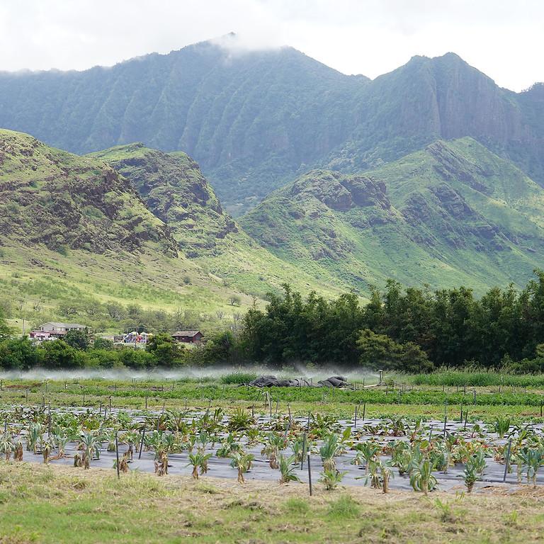 ASLA Hawaii 2020 - Virtual Annual Meeting - Food and Resilience in Hawaii
