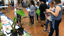 Kailua High School Career Fair