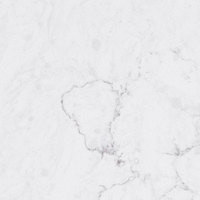 Calacatta Frost.jpg