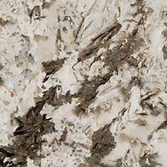 bianco-antico-granite.