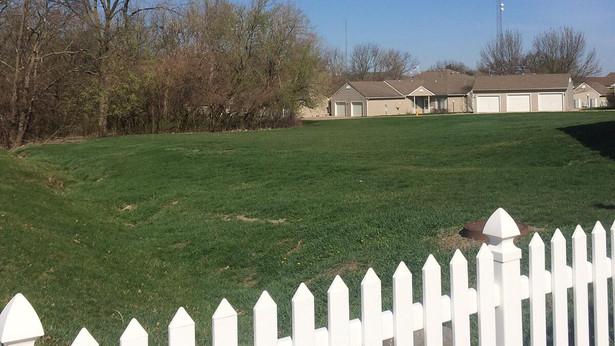 Property Backs to woods.jpg