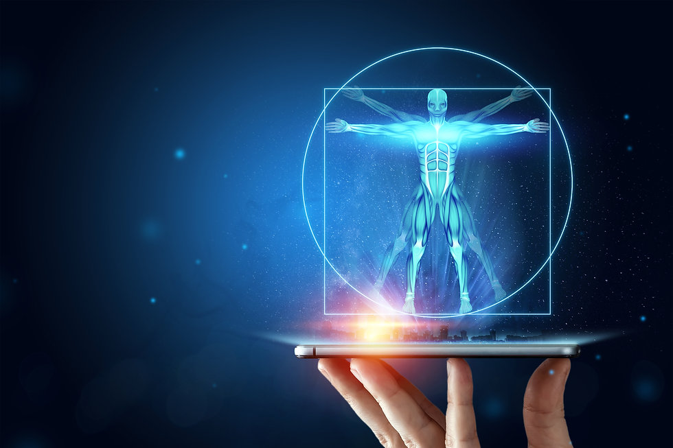 Hologram Vitruvian man, the structure of