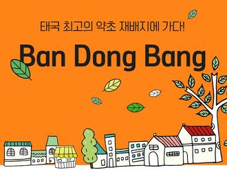 제4회 태국 아시아태평양청년교류 -  현지조사  (2018.07.11. - 07.17.)