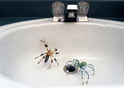 Creepy Lampworked Spiders!