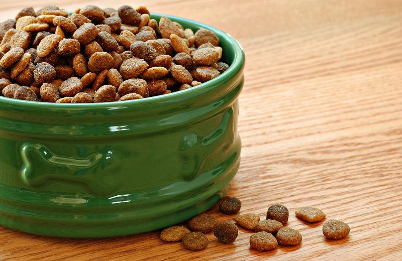 dog-food-5-3.jpg