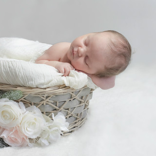 newborn_photographer_Cleveland_Ohio_I_Fe