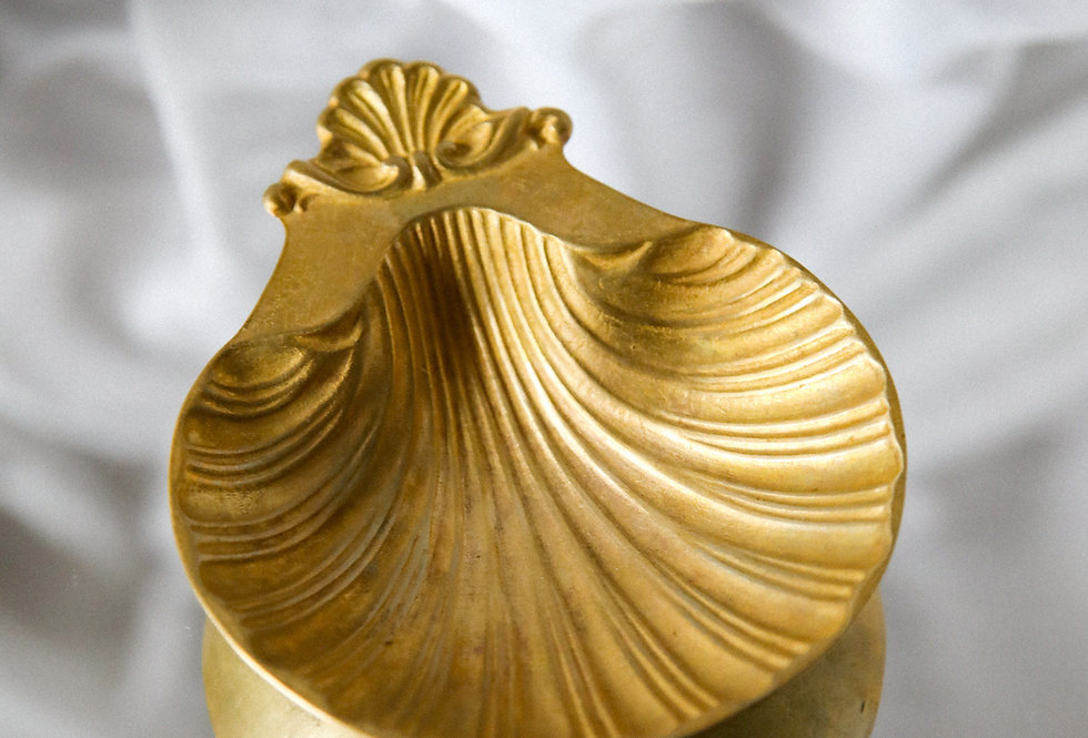 "Schale ""Venus Clam"""