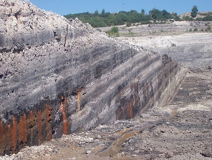 Bovey Basin quarry face