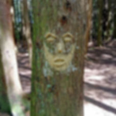 WILD CLAY OFFERINGS 🙏_'The Talking Tree