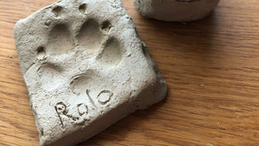 Canine Clay Adventures - Rolo's Paw x