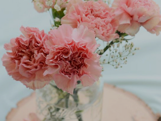 Mother's Day Blooms & Gift Ideas!