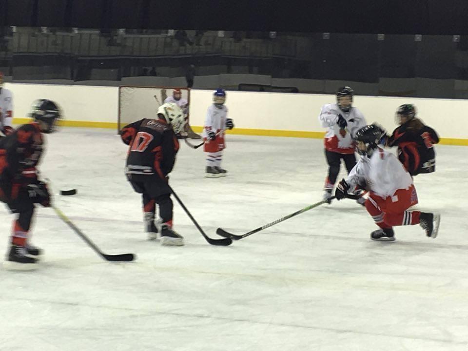 hockey albertville