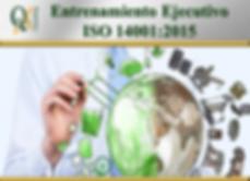 Entrenamiento ejecutivo ISO 14001-2015_e
