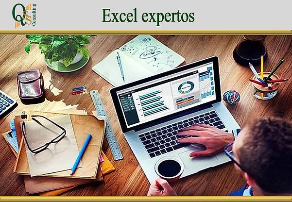 plantilla excel expertos.jpg