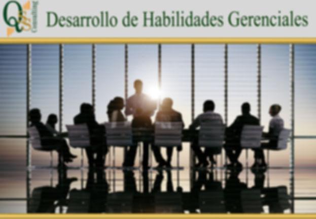 plantilla HAB GERENCIALES.jpg