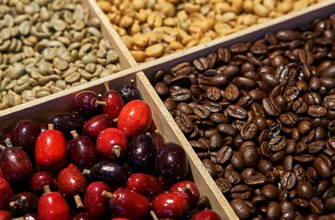 Von der Kaffee-Kirsche bis hin zur gerösteten Kaffee-Bohne