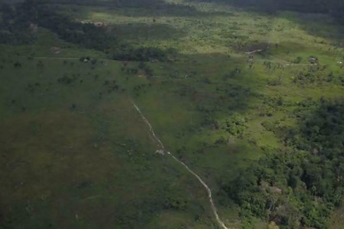 1 m²  Agriculture-Land/Forest/Plantation
