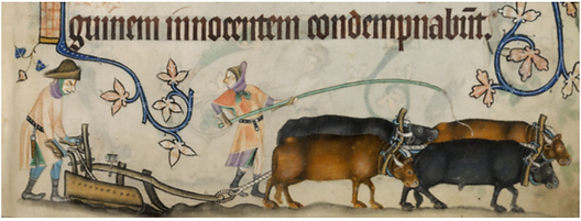 Image from 14th century illustrated maus