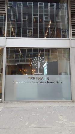 Treehaus - Window Film