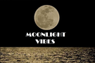 Moonlight Vibes