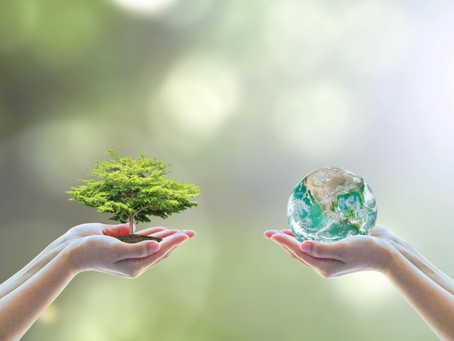 Is it up to companies to have a green policy?
