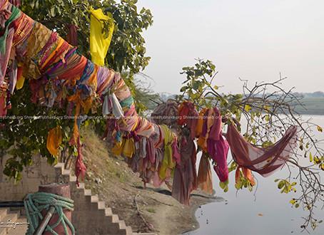 Save Vraj Mandal (Hindi)