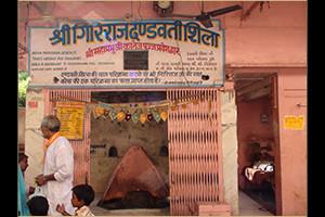 Girirajji Dandvati Shila darshans