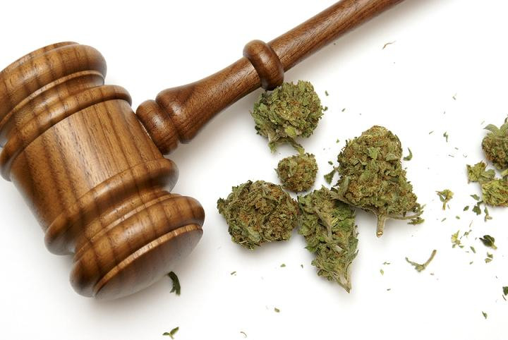 Marijuana Laws and the Workplace | Business Consulting, Healthcare Consulting, Alternative Medicine Consulting, Salsbury & Co.