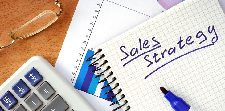 Sales Strategy Business Consulting Healthcare Consulting Alternative Medicine Consulting Salsbury & Co.