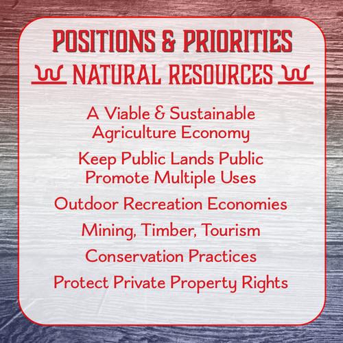 Ken Walsh - Positions & Priorities