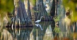 Louisiana, USA