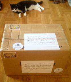 Box Ready to Ship