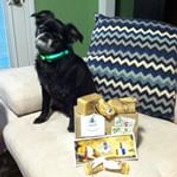 Oscar, Instagram Pet Soap Customer