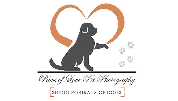 Take a tour of the Paws of Love Studio