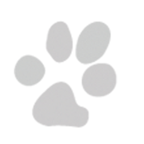 Paw Print - single right.png